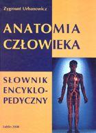 Definicja Anatomia człowieka - słownik słownik