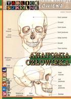 Definicja Anatomia człowieka - tablice słownik