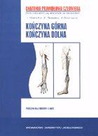 Definicja Anatomia prawidłowa człowieka słownik