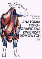 Definicja Anatomia topograficzna słownik