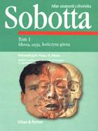 Definicja Atlas anatomii człowieka słownik