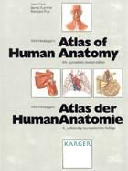 Definicja Atlas of Human Anatomy słownik