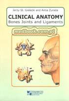 Definicja CLINICAL ANATOMY Bones Joints słownik