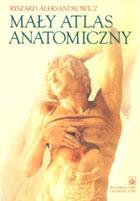 Definicja Mały atlas anatomiczny słownik