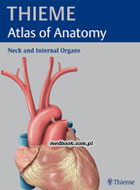 Definicja PROMETHEUS Atlas of Anatomy słownik