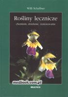 Definicja Rośliny lecznicze - chemizm słownik
