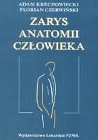 Definicja Zarys anatomii człowieka słownik