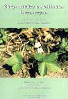Definicja Zarys wiedzy o roślinach słownik